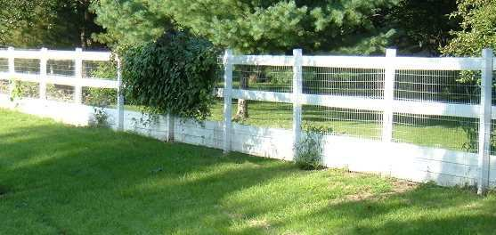 Cisr inexpensive fencing this is the fence that we built here at cisr it encloses almost 2 acres of yard exclusively for the dogs it is just over 6 feet tall solutioingenieria Choice Image