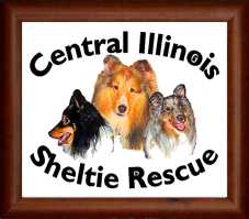Central Illinois Sheltie Rescue Logo